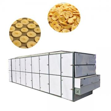 Fruit Apple Rings Mango Dryer Machine Dried Dates Apricot Dehydrator