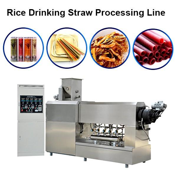 Single Screw Extruder Full Automatic Rice Straw Pasta Straw Making Machine in Korea #1 image