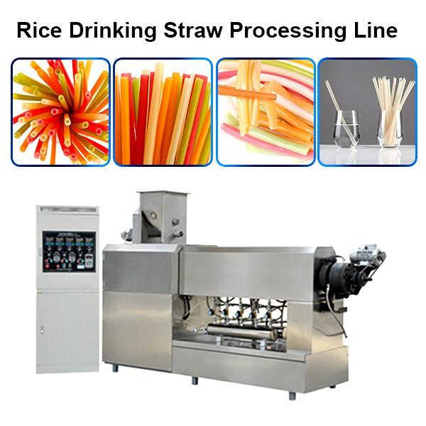 Factory Price Full Automatic Pasta Straw Machine/Macaroni Making Machine/Processing Line #1 image