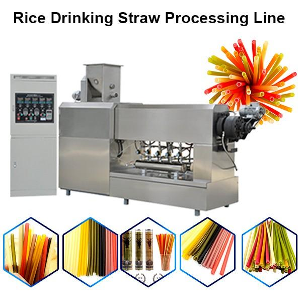 100% Biodegradable PLA Drinking Straw Making Machine Disposable Eco Friendly Polylactic Acid Straw #1 image