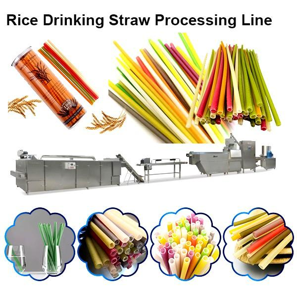 Factory Price PLA biodegradable Plastic Drinking Straw Extruder Making Machines #1 image