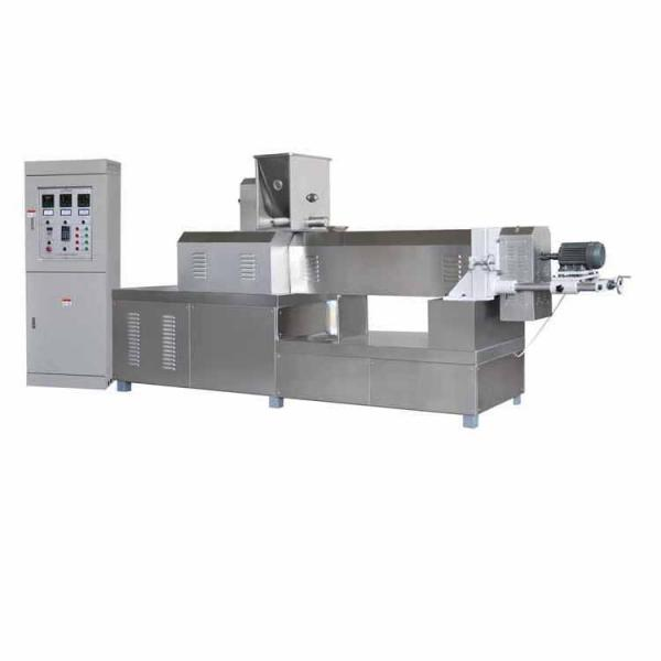 Full Automatic Puffed Nutrition Artificial Rice Extruder Making Machine #1 image