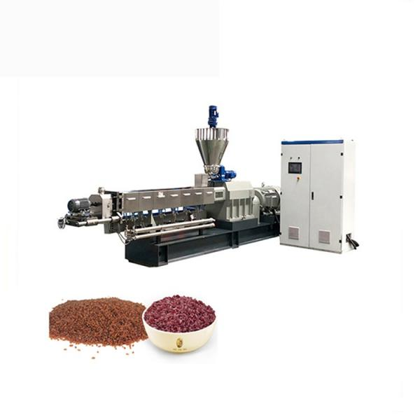 Saibainuo Double Screw Instant Nutrition Manmade Puff Artificial Rice Food Making Processing Equipment Line Extruder Machine #1 image