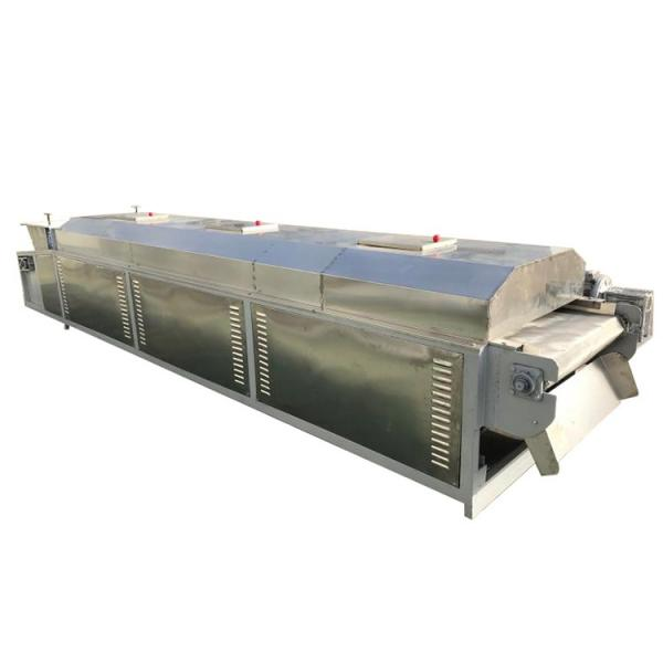 Continuous Dehydrated Vegetable Mesh Belt Dryer Machine #2 image