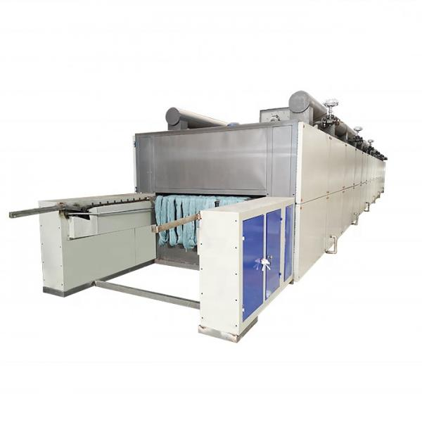 Industrial Hemp Hot Air Continuous Belt Fruit Dryer Vegetable Drying Machine #2 image