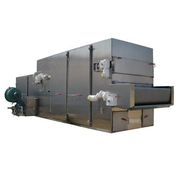 Continuous Dehydrated Vegetable Mesh Belt Dryer Machine #3 image